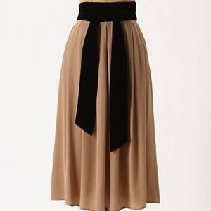 Anthropologie Dress Gallery Skirt